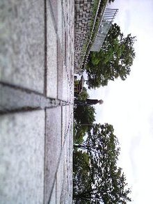 CA390020-0001.JPG